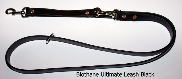 An image of the Biothane dog leash from The Ultimate Leash Biothane Series