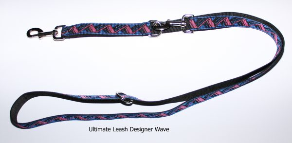 An image of a designer dog leash from The Ultimate Leash Designer Series