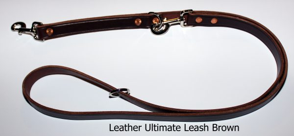 An image of a leather dog leash from The Ultimate Leash Leather Series