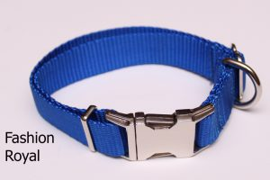 An image of a standard blue dog collar from TheUltimateLeash.com
