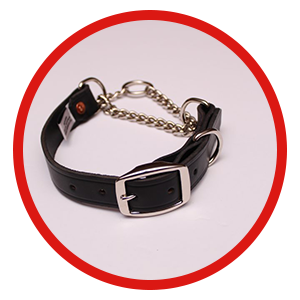 Martingale Collar - Leather