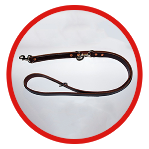 Ultimate Leash - Leather